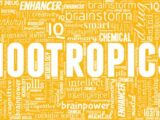 Nootropic Ingredients